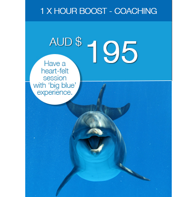 Coaching: 1 x Hour Boost